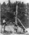MP-0000.49.4 | Haida totem pole, Gold Harbour, Queen Charlotte Islands, BC, 1887(?) | Photograph | Richard Maynard |  |