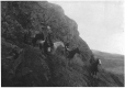 MP-0000.60 | Horses & Indians descending mountainside, about 1925 | Photograph | Anonyme - Anonymous |  |