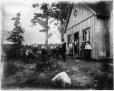 MP-0000.117.17 | The picnic, Shawbridge, QC, about 1895 | Photograph | David Pearce Penhallow |  |