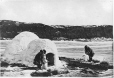 MP-0000.391.1 | Construction d'un igloo, Petite rivière de la Baleine, QC, 1872 | Photographie | James Laurence Cotter |  |