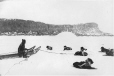 MP-0000.391.5 | Team of dogs in harness, Little Whale River, QC, about 1870 | Photograph | Dr. William Bell Malloch |  |
