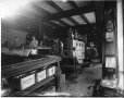 MP-0000.587.94 | Chaîne de production, brasserie Dawes, Lachine, QC, vers 1920 | Photographie | Anonyme - Anonymous |  |