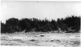 MP-0000.597.317 | Rapides, Waskaganish (Rupert House), baie James, QC, 1921(?) | Photographie | Captain George E. Mack |  |