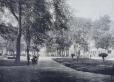 MP-0000.840.17 | Viger square, Montreal, QC, about 1910 | Print | Neurdein Frères |  |