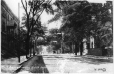 MP-0000.841.8 | Park Avenue looking North from Sherbrooke Street, Montreal, QC, about 1910 | Print | Anonyme - Anonymous |  |