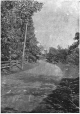 MP-0000.892.11 | On the Lower Lachine Road, Montreal vicinity, QC, about 1910 | Print | Anonyme - Anonymous |  |