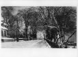 MP-0000.1195.1 | The Boulevard in winter, Trois-Rivières, QC, about 1910 | Print | Anonyme - Anonymous |  |
