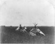MP-0000.1453.18 | Tents on the prairie, west of the settlement, Red River, MB, 1858 | Photograph | Humphrey Lloyd Hime |  |