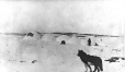 M5797 | Row of snow houses, Wakeham Bay, Hudson Strait, QC, about 1910 | Photograph | Anonyme - Anonymous |  |