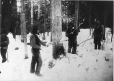 MP-0000.1828.74   Chopping down a tree, QC-ON, about 1870   Photograph   Alexander Henderson     