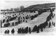 MP-0000.1750.8.7 | Winter scene on Mount Royal, Montreal, QC, about 1910 | Print | Anonyme - Anonymous |  | 