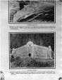 MP-0000.2007.1 | Haida House, copied from book, about 1900 | Photograph | Anonyme - Anonymous |  |