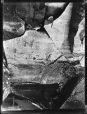 MP-0000.2141.8 | Rock paintings, Fairy Point, Lake Missinabie, ON, 1930 | Photograph | Edwin Tappan Adney |  |