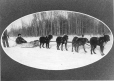 MP-0000.2292.3 | Alf Hutchins' dog team, AB, about 1890 | Photograph | C. W. Mathers |  |
