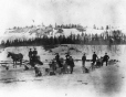 MP-0000.2360.65 | Dog teams on a frozen river, YT, about 1900 | Photograph |  |  |