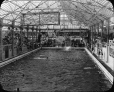 MP-0000.25.103 | Crystal Gardens, Victoria, C.-B., vers 1926 | Photographie | Anonyme - Anonymous |  |