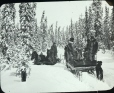 MP-0000.25.1042 | A country road in winter, about 1910 | Photograph | Anonyme - Anonymous |  |
