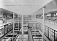 MP-0000.25.241 | Exhibition hall, Natural History Society museum, Montreal, QC, about 1900 | Photograph | Anonyme - Anonymous |  |