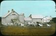 MP-0000.25.455 | Dairy farm, QC, about 1922 | Photograph | Anonyme - Anonymous |  |