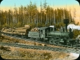 MP-0000.25.885 | Logs being transported by the Comox & Campbell Lake Tramway Co., Vancouver Island, BC, about 1925 | Photograph | Anonyme - Anonymous |  |