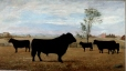 M983.239 | The Herd of Aberdeen Angus Owned by Hon. J. H. Pope, M. P. of Cookshire, Que. | Painting | Frederick Charles Gordon |  |