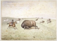M462 | William Hind meeting a buffalo | Painting | William George Richardson Hind |  |