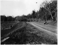 MP-1977.76.27 | Road beside McGibbon's house, Mount Royal Park, Montreal, QC, 1897 | Photograph | Alfred Walter Roper |  |