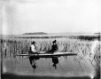 MP-1977.76.51 | Boating on Rice Lake, ON, 1897 | Photograph | Alfred Walter Roper |  |