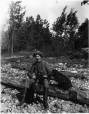 MP-1977.76.86 | H. L. MacNachtan and dogs, Rice Lake, ON, 1898 | Photograph | Alfred Walter Roper |  |