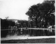MP-1977.76.148 | Westmount Park pond, Westmount, QC, 1908 | Photograph | Alfred Walter Roper |  |