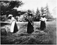 MP-1974.129.98 | Three ladies haying, Drummondville, QC, about 1900 | Photograph | Annie G. McDougall |  |