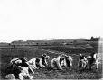 MP-0000.27.139 | Trappist monks at work in the fields, Oka, QC, about 1900 | Photograph | Wallis & Shepherd |  |