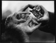 MP-1979.111.218 | Cape Nome gold nuggets, about 1900 | Photograph | Edwin Tappan Adney |  |