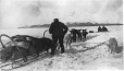 MP-1986.9.5.37 | Loaded dog sled on ice, Labrador(?), NF(?), about 1910 | Photograph | W. O. K. Ross |  | 