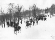 MP-1987.61.1.102 | Winter scene, Mount Royal, Montreal, QC, about 1920 | Photograph | Harry Sutcliffe |  |