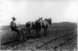MP-1990.39.69 | Cultivating Potatoes, AB, about 1910 | Photograph | Anonyme - Anonymous |  |