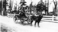 MP-1992.9.3.30 | Boy on dog cart near Quebec City, QC, 1929 | Photograph | Robert Bruce Bennet |  |