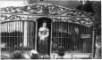MP-1994.9.591 | Lion cages and Daniel, circus parade, Montreal, QC, 1920 | Photograph | Henri Richard |  |