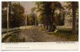 CP530 | Church Avenue, Sussex, New Brunswick | Postcard | Laura Eliza Spooner |  |