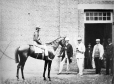 I-12262.1 | Mr. Forbes' horse and jockey, Montreal, QC, 1864 | Photograph | William Notman (1826-1891) |  |