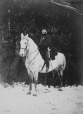 I-34749.1 | Sgt maj. Bigwood et un cheval, Montréal, QC, 1868 | Photographie | William Notman (1826-1891) |  |