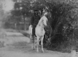 I-44386.1 | L. P. Fairbank on horseback, Montreal, QC, 1870 | Photograph | William Notman (1826-1891) |  |