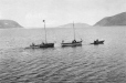M2000.113.6.210 | Two Revillon Freres sloops being tugged by small motor boat; Wakeham Bay (Kangiqsujuaq), Hudson Strait, 1909 | Photograph | Hugh A. Peck |  |