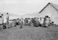 M2000.113.6.213 | Revillon Freres post servants at Kangiqsujuaq (Wakeham Bay), QC, 1909 | Photograph | Hugh A. Peck |  |