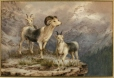 M2003.145.9 | Landscape with Three Rocky Mountain Sheep | Painting | Thomas Mower Martin |  |