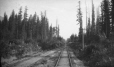 M2003.28.80 | Railway siding in a forest, ON ?, 1907 | Photograph | Burkewood Welbourn |  |