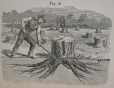 M930.50.1.136 | Working scene | Print | John Henry Walker (1831-1899) |  |