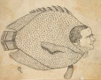 M930.51.1.48 | Caricature | Estampe | John Henry Walker (1831-1899) |  |