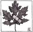 M996.11.142 | Canadian Unity | Drawing | Aislin (alias Terry Mosher) |  |