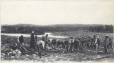 MP-0000.1228.4 | Orphans clearing land under the direction of Father Brousseau, St. Damien, QC, about 1910 | Print |  |  |